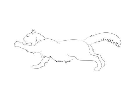 vector illustration of a cat that stretches its paw, drawing lines, vector, white background Ilustração