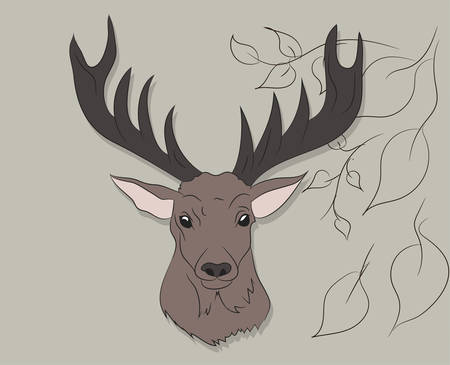 vector illustration portrait of a deer on a colored background, vector