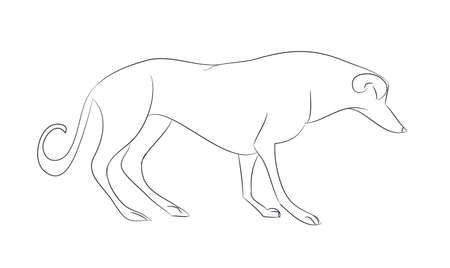 dog stands lines, vector, white background, dog stands Archivio Fotografico - 129067410