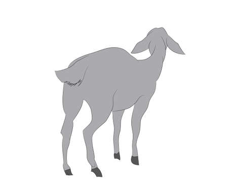 vector illustration of a goat that stands, drawing color, vector, white background Фото со стока - 129067537