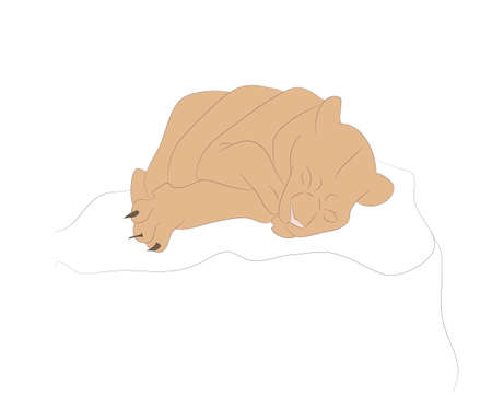 vector illustration of a lioness sleeping, drawing color, vector, white background