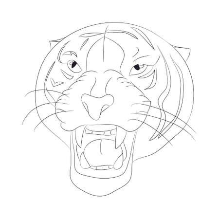 vector illustration portrait of tiger lines, vector, white background Ilustração