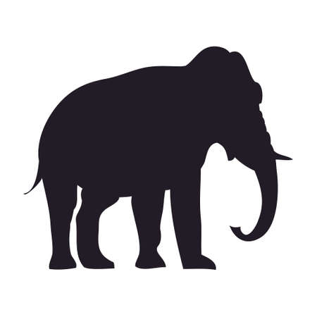 vector illustration elephant goes drawing silhouette, vector, white background