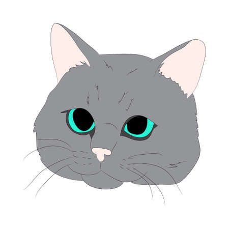 vector illustration cat portrait, vector, white background, color drawing Reklamní fotografie - 131587176