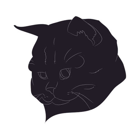 vector illustration of cat portrait, drawing silhouette, vector, white background Banque d'images - 134887739