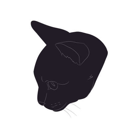 vector illustration of cat portrait, drawing silhouette, vector, white background Banque d'images - 134887740