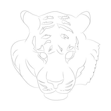 vector illustration portrait of tiger lines, vector, white background Illustration