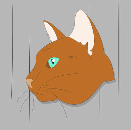 vector illustration of a portrait of a cat on a colored background, bright background, vector