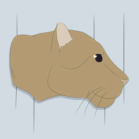 lioness portrait vector illustration, vector, color background Illustration
