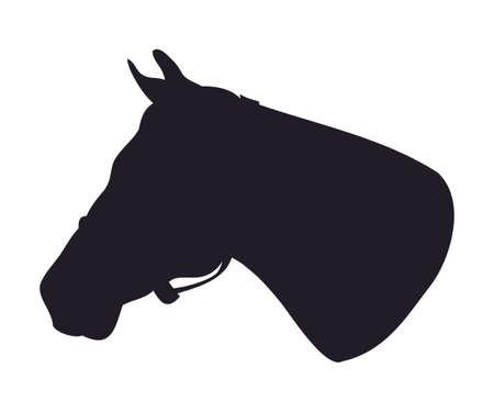 Illustrazione vettoriale di ritratto di cavallo, disegno di sagoma, vettore, sfondo bianco Vettoriali