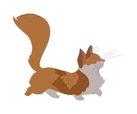 vector illustration of a cat that is walking, color drawing, vector, white background Ilustração