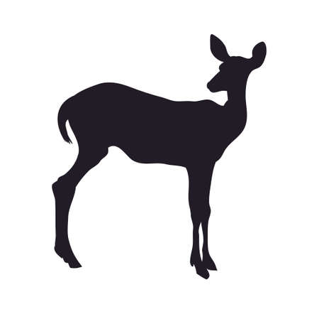 vector illustration, deer is worth silhouette, vector, white background
