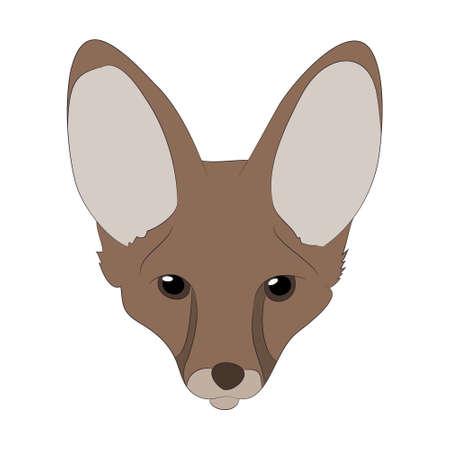 fox portrait vector illustration, color illustration, wild world, vector, white background Ilustração