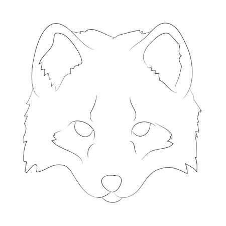 fox portrait vector illustration, line drawing, wild world, vector, white background