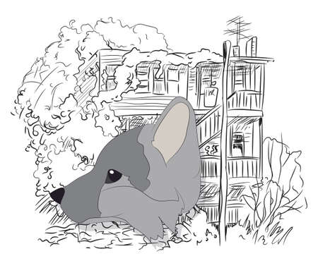 portrait of fox, vector, on green background, looking up Ilustração