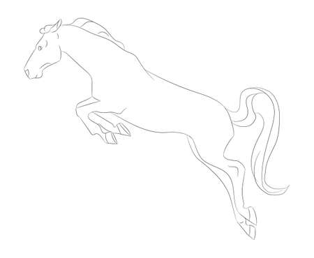 horse vector illustration, line drawing, vector, white background Vectores