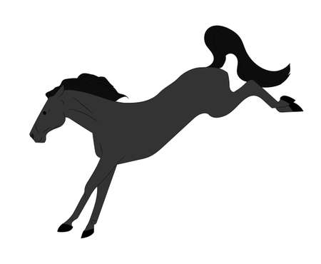 horse vector illustration, color illustration, vector, white background