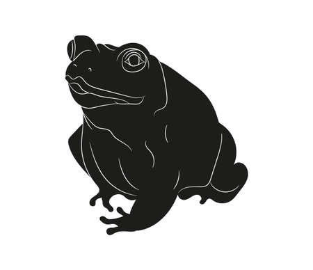 frog vector illustration, silhouette drawing, vector, white background