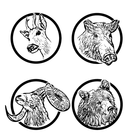 damhirsch: vier Tiere des Waldes in den Ringen