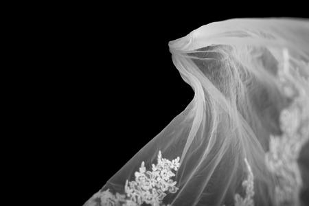 Bridal Veil on Black Background 版權商用圖片