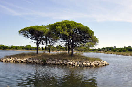 islet: to islet on water