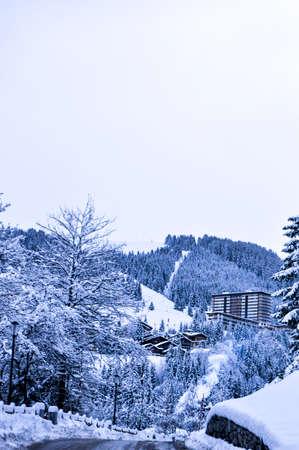 winter: winter
