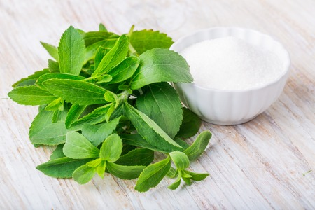 sugar powder: fresh stevia leaves and small bowl with sugar on a white wooden table. studio shot
