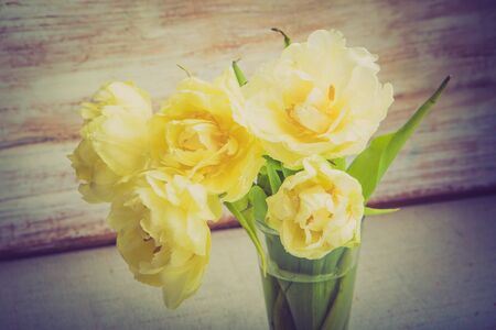 lomography: Vintage photo of double tulips in a vase on wooden table