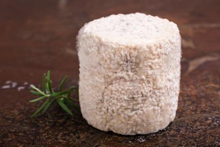 queso cabra: Charolais chevre queso de cabra francés. tiro del estudio