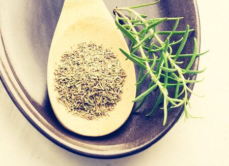 lomography: Vintage photo of dry and fresh rosemary