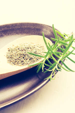 cros: Vintage photo of dry and fresh rosemary