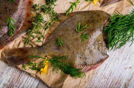 plaice: Raw fish flounder in fresh herbs on paper