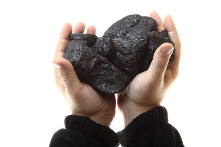 Pieces of coal in hand isolated on white background photo