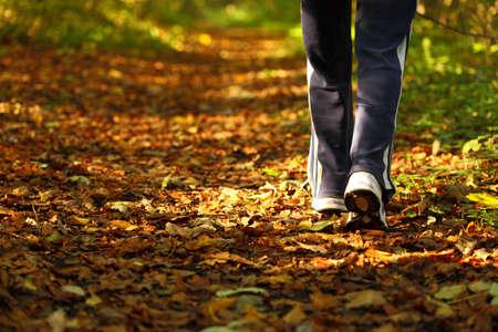 Donna che cammina sci di fondo e pista in autunno foresta