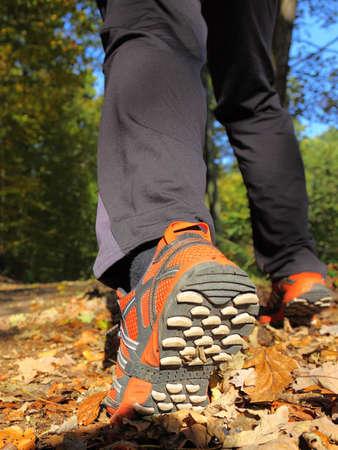 cross leg: hombre caminando a campo traviesa y pista en el oto�o de los bosques
