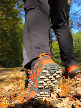 man walking cross country and trail in autumn forest Standard-Bild