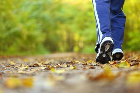 Kobieta spaceru cross country Szlak w lesie jesienią Zdjęcie Seryjne