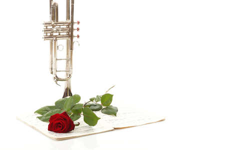 red rose and old note notes trumpet love music white background photo