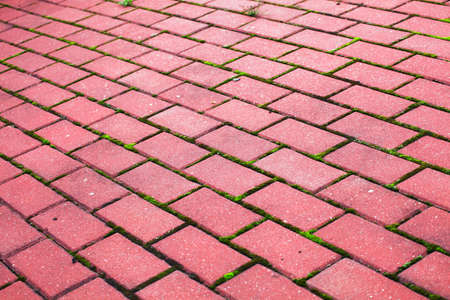 Garden stone path Brick Sidewalk paving tiles photo