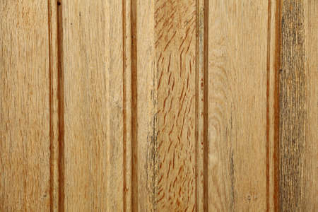 Old Wood tree nature wall pattern Background Stock Photo - 13187170