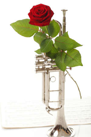 silver flute: red rose and old note notes trumpet love music white background