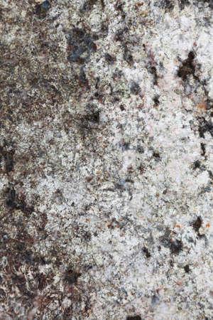 Seamless rock texture background closeup white stone Stock Photo - 13822720