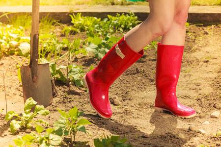 クローズ アップ女性足ツールをガーデニングの庭で赤ゴム ブーツを身に着けています。