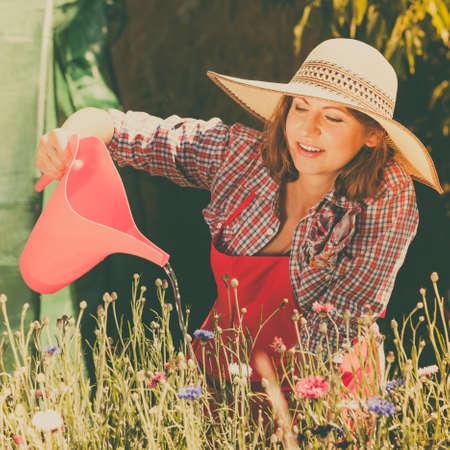 gardening: Gardening. Attractive woman in hat red apron working in her backyard garden watering flowers outdoor