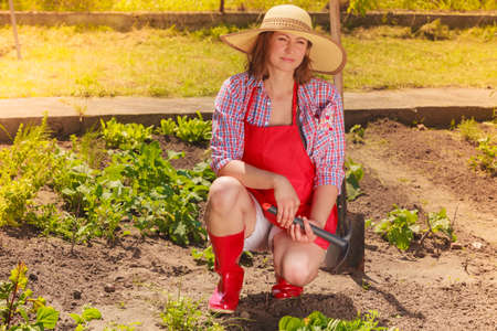 Mature woman wearing hat red rubber boots with gardening tool working in her backyard garden outdoor Stock Photo