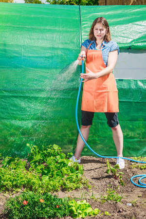 Gardening. Woman in orange apron holds the sprinkler hose for irrigation plants watering the garden outdoor Stock Photo