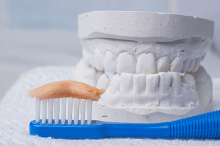 prothetic: Oral hygiene health concept. Closeup toothbrush with paste in dental gypsum model plaster