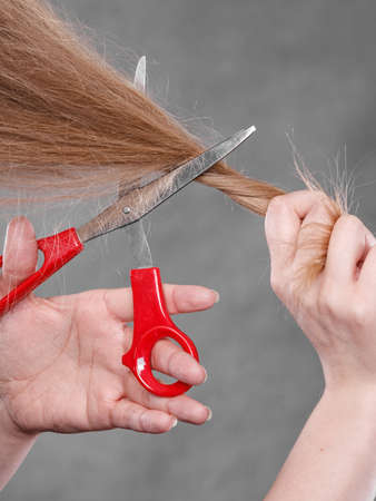 coiffure: Cutting coiffure and new look. Part body blonde woman cut her long straight hair. Female hands with red scissors making modern hairstyle. Stock Photo