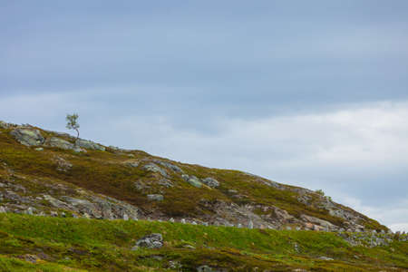 scandinavia: Tourism vacation and travel. Rocky mountains landscape at summer in Norway, Scandinavia. Stock Photo