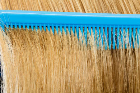 Combing and brushing concept. Routine everyday hygiene. Close up of detail blue comb in blonde smoothy healthy female hair.
